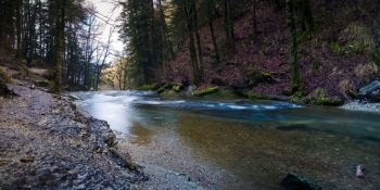 Les Cascades du Hérisson - 2020.02.18